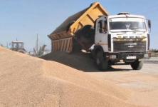 В Павлодарской области сельхозкооператив на грани развала