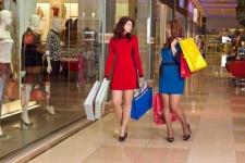 Запасной кошелек для шопинга