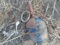 Ручную гранату обнаружил сельчанин на поле в Павлодарской области
