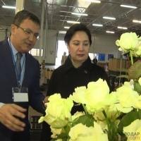 Вице-премьер Казахстана Гульшара Абдыкаликова с правительственной группой прибыла в регион с двухдневной рабочей поездкой