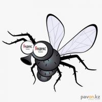 В прошлом году жители Павлодара у Яндекса спрашивали больше про комаров, в этом - про мошек