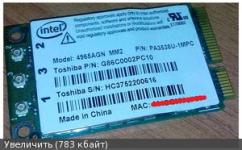 Вопрос по Mini PCI-E to PCI-E Adapter