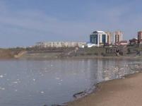 29 апреля пойма Иртыша полностью будет затоплена