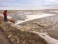 Четыре перелива талых вод зарегистрировали в Павлодарской области