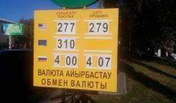 Рубль стоит больше четырех тенге, а евро - дороже трехсот. Обзор курсов валют в павлодарских обменниках