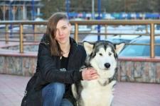 Надежды приюта для бездомных животных