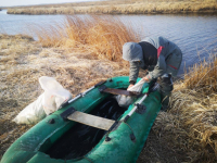 24 килограмма карасей поймали браконьеры возле Аксу