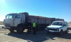 Больше 600 тонн различной подкарантинной продукции пытались провезти в Павлодарскую область из России без фитосанитарных сертификатов