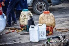 В Павлодарской области определили подрядчика, который будет бороться с гнусом