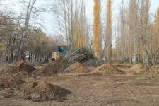 Молодежь должна взять под свой патронат Гагаринский парк