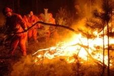 Лесные пожары из России перекинулись в Китай