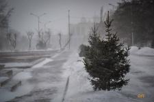 В Павлодаре ожидается усиление ветра