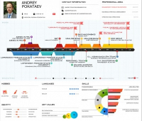 Инфографика в резюме