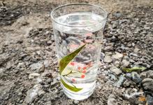В Павлодарской области ищут связь между качеством воды и здоровьем населения