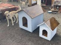 Экибастузский осужденный изготовил домики для собак в приюте