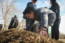 Природный памятник «Гусиный перелет» очищают от мусора в рамках общегородского субботника