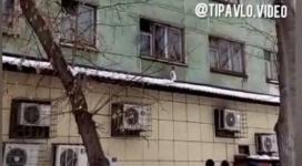 2-летний ребенок выжил, выпав с 3-го этажа в Павлодаре