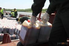 Стало известно, какая фирма будет травить комаров и мошек в Павлодарской области