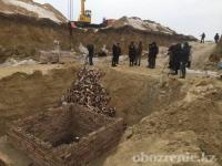 Жители села Жетекши собирают подписи против строительства скотомогильника