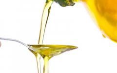 В Павлодарской области хотят запустить производство рафинированного масла
