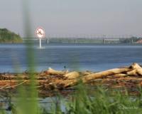 В Павлодарской области запретили купаться в пьяном виде