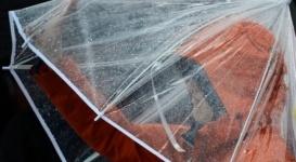 Осадки и сильный ветер ожидаются в ближайшие дни в Казахстане