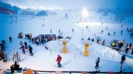 """2,8 миллиарда тенге потратят на строительство лыжного курорта """"Каскасу"""" под Шымкентом"""
