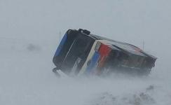 В Успенском районе рейсовый автобус вылетел в кювет