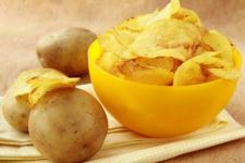 Картофель для чипсов посадили в Павлодарской области