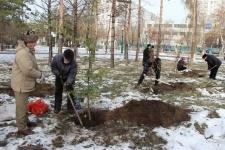 На территории трех павлодарских мечетей посадили деревья