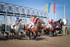 Павлодарцев приглашают на закрытие скакового сезона