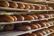 Выпускник вуза из Павлодарской области вдохновился работой немецких хлепопеков и открыл в родном селе пекарню