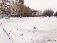 В акимате Павлодара объяснили, почему не подают заявление в полицию из-за пропажи дачного рынка