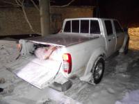 Жителя Павлодара задержали на блокпосту за незаконный отстрел косули