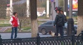 Эксперимент: Реакция алматинцев на избиение собаки