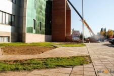 Благоустраивая территорию ТД «Артур» строители перенесли деревья в другое место