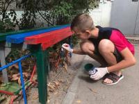 Полтонны краски потратили в Павлодаре во время акции «Чистый город - чистые дворы»