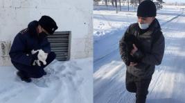 Осужденные-волонтеры спасают замерзающих животных в Павлодарской области