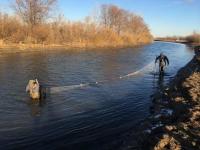 В Прииртышье спасают молодь рыб из заморных озер