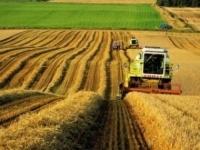 Павлодарской области на финансирование АПК выделен 1 млрд 300 млн тенге