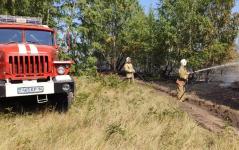 В Павлодарской области загорелся лес