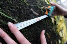 В Павлодарском районе фермерам выдали земельный участок для овощеводства, а потом потребовали его вернуть