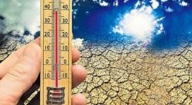 Казахстан может лишиться зерновых областей и потерять озеро Балхаш