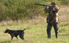 В Иртышском районе запретили охоту