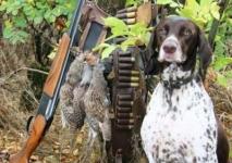 Сезон открыли браконьеры