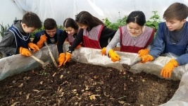 В одной из павлодарских школ занялись разведением червей