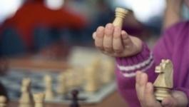 Международный турнир по быстрым шахматам соберет в Павлодаре чемпионов континентов