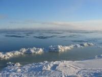 За лето ледяной покров Арктики увеличился на 60%