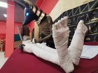 Павлодарский музей Ertis вышел из карантина с выставкой мумий