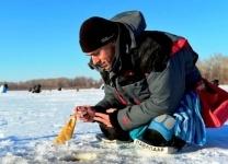 Стали известны обладатели Кубка Павлодарской области по зимнему спортивному рыболовству